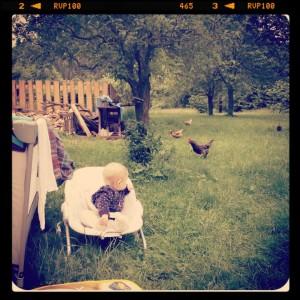 Lidka a valašské kury, první setkání loni v létě. Foto: Sláma v botách