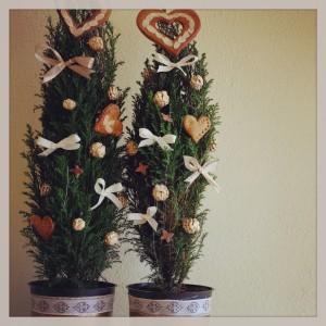 Původně vánoční tůje se odstraněním hvězd a přidáním perníčkových srdcí rázem staly valentýnskými. Foto: Sláma v botách
