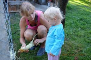Krmím, krmíš, krmíme. A práce na pozemku stojí. Foto: Sláma v botách