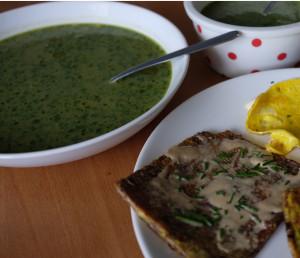 Extrémní zelená barva vznikla přidáním hlávkového salátu. Ano, dokonce i tohle lze, salát se ale přidává až po dovaření. Nedoporučuju zeleninovým začátečníkům. Foto: Sláma v botách