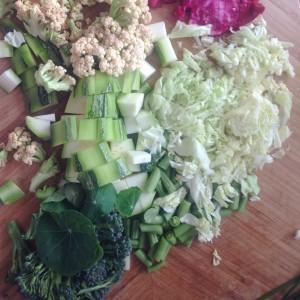 Květák, brokolice, kapusta, cuketa, řepa, česnek, lichořetišnice, fazolky. Foto: Sláma v botách