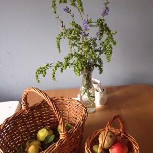 Hrušky, jablka a kytky natrhané na jednom fajn výletě za město.  Foto: Sláma v botách