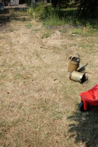 Požadavky na golfové hřiště by náš trávník letos (opět) nesplnil. Trávu jsme sekat nemuseli. Taky pošla. Foto: Sláma v botách