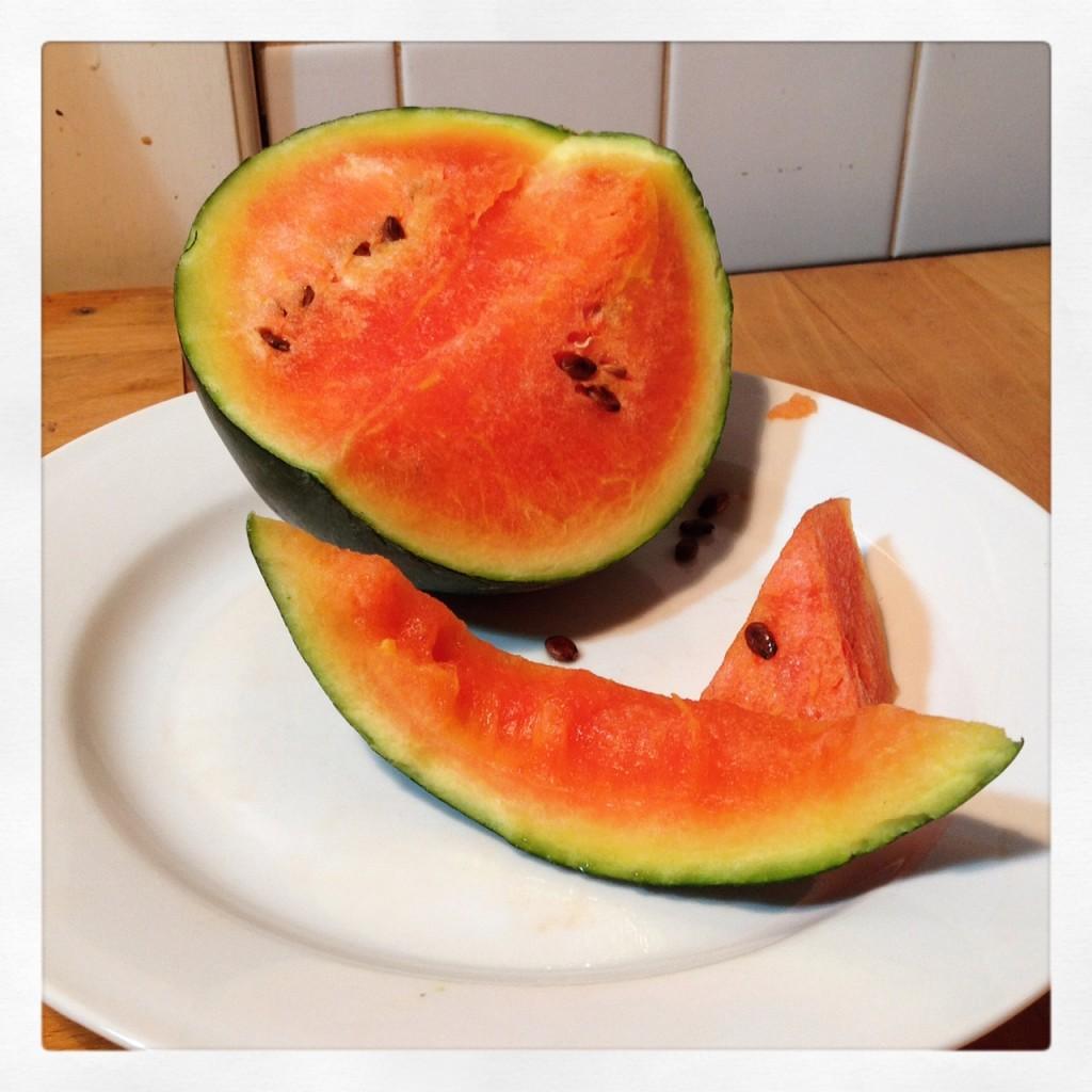 Společně vypěstované melouny - sladké plody tohoto léta u rodičů. Foto: Sláma v botách