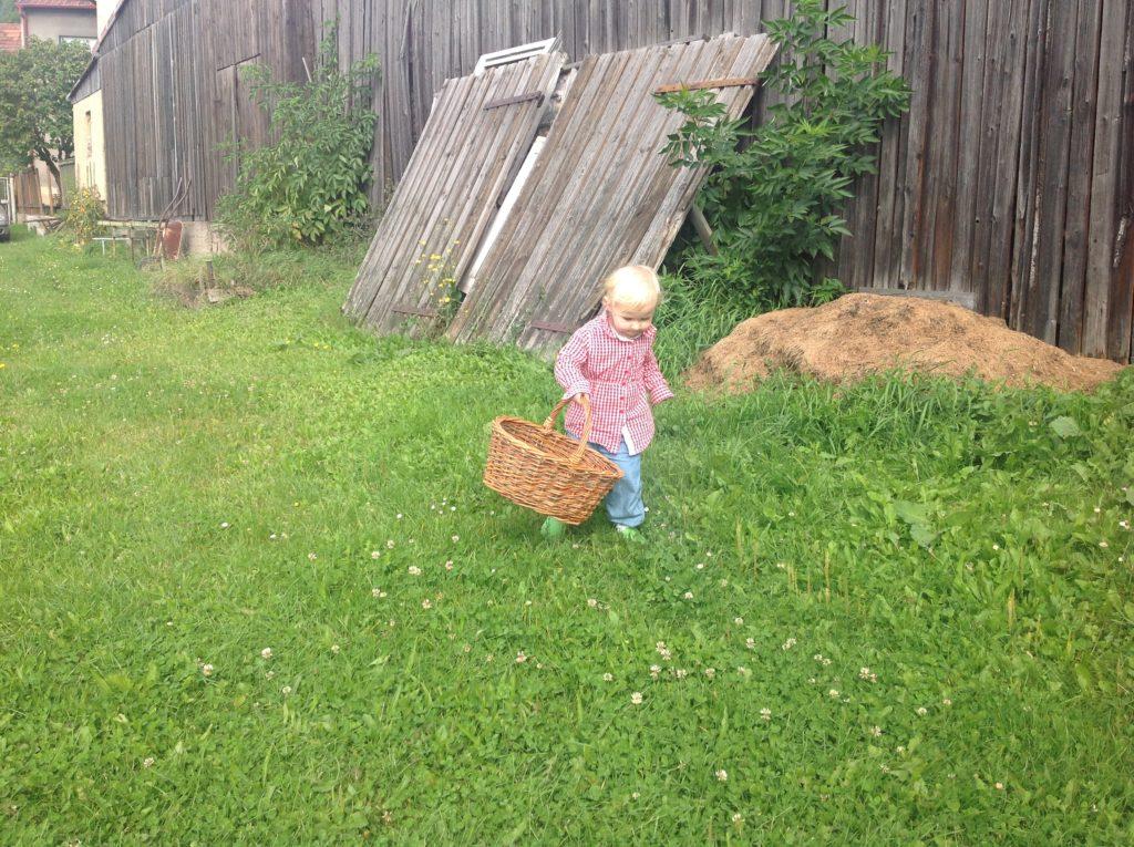 Odnést plevel na kompost je důležitý úkol! Foto: Sláma v botách